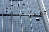 Office window cleaner, highrise,Hochhaus, Fensterputzer, Abseilen, abseiling, Glassfassade, glass