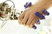 Humanoid robot, ARMAR, Fluid Hand, Institute für Rechnerentwurf und Fehlertoleranz at Karlsruhe University, 2004
