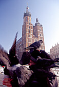 Market Square and the tower of the Church of the Virgin Mary, Cracow, Poland