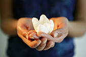 Hands holding tulip blossom, close up