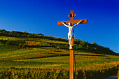 Cross in the Vineyard at Sigolsheim,Elsass,France
