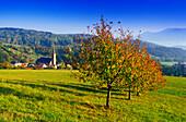 Breitenbach,Vosges,Elsass,France