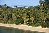 Beach on Nanuya Lailai Island,Blue Lagoon Cruise, Yasawa Islands, Fiji