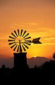 Windmill, Casa Blanca, Mallorca, Baleares, Spain