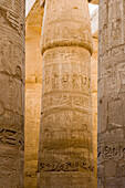 Relief Carvings on Columns at Karnak Temple, Luxor, Egypt