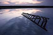 Old ladder lying in water, coastline of Baltic Sea, Schleswig-Holstein, Germany