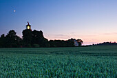 Lighthouse Staberhuk and field in the evening, Fehmarn Island, Schleswig-Holstein, Germany
