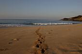 Strand, Fußspur, Fussspur im Sand, Morgen, morgens, Maunalua Bucht, Honolulu, Vereinigte Staaten von Amerika, U.S.A.