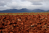 Acre and mountains under cloud cover, Queensland, Australia