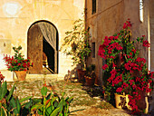 Finca Tourismus, Son Cladera, bei Pollenca, Mallorca, Spanien