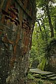 rock calligraphy, Huayuan Temple, pilgrims, Mountains, Emei Shan, World Heritage Site, UNESCO, China, Asia