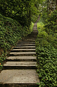 path and stairs, pilgrims, Mountains, Emei Shan, World Heritage Site, UNESCO, China, Asia