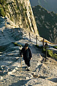 daoist monk on Fish Back Ridge, approaching Cui Yun Gong Monastery on South Peak, pilgrim path along stone steps with chain handrail, cliffs of West Peak, Hua Shan, Shaanxi province, Taoist mountain, China, Asia