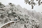 mountain path in snow on slopes of the mountain, Huang Shan, Anhui province, World Heritage, UNESCO, China, Asia