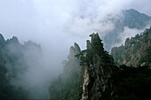 clouds, mist on slopes, Huang Shan, Anhui province, World Heritage, UNESCO, China, Asia