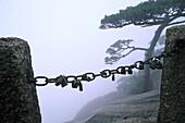 Vorhängeschlösser an einer Kette vor einem Abgrund, Huang Shan, Provinz Anhui, China, Asien