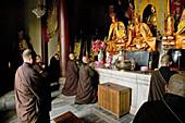 Monks praying at service at Ronshen monastery, Jiuhuashan, Anhui province, China, Asia