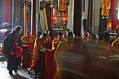 pilgrim and monksTemple of Longevity, Monastery, Jiuhuashan, Mount Jiuhua, mountain of nine flowers, Jiuhua Shan, Anhui province, China, Asia