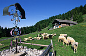 Cross on an alpine pasture with alpine hut and sheep in the background, near Kranzhorn, Chiemgau Alps, Tyrol, Austria