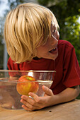 Wet boy bending over a dish with water and an appel, children's birthday party