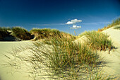 Dunes at beach, island Juist, East Friesland, Lower Saxony, Germany