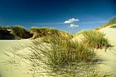 Dunes at beach, island Juist, East Friesland, Lower Saxony, Germany