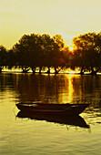 Empty boat on Rhine River, Oestrich-Winkel, Hesse, Germany