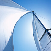 Mast with mainsail and foresail of a sailboat