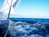 Sailboat cutting through water, Bay of Kiel between Germany and Denmark