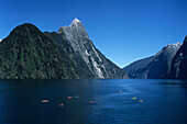 Aerial Photo of Sea Kayaks on Milford Sound, Fiordland National Park, South Island, New Zealand
