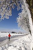 A man jogging in a winter landscape, Upper Austria, Austria