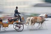 A horse drawn carriage in Salzburg, Austria