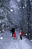 Father with two kids sledging during snowfall, Krispl, Salzburg, Austria