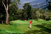 Man playing golf at Palheiro Golf Club, Funchal, Madeira, Portugal, Europe