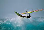 Windsurfer in action, windsurfing, Sport