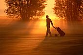 A golf player pulling golf bag over golf course at sunset, Golf, Sport