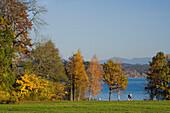 Two people jogging in Park Bernried, Lake Starnberg, Bernried, Upper Bavaria, Bavaria, Germany
