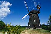 Windmill of Benz, Usedom Island, Mecklenburg-Western Pomerania, Germany