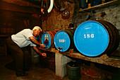 Wine cellar, Los Llanillos, El Hierro, Canary Islands, Spain