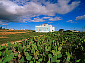 Country house, Art Nouveau, prickly pears, opuntia, Antigua, Fuerteventura, Canary Islands, Spain