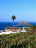 Country house with banana plantation near Garachico, Tenerife, Canary Islands, Atlantic Ocean, Spain