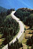 Road to Hurricane Ridge, Olympic Mountains, Washington, USA