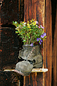Old Hikingboot, Mountain-Flowers, Alpine Dairy Hut, Nationalpark Hohe Tauern, Salzburger Land, Austria