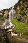 Children bathing on platform of Fallbach (largest waterfall of Austria), Maltatal, Malta, Carinthia, Austria