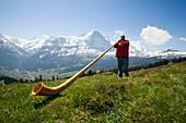 Man playing an alphorn at Bussalp 1800 m, Grindelwald, Bernese Oberland, Canton of Bern, Switzerland