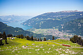View from Schynige Platte (1967 m) over rack railway to Interlaken and Lake Thun, Interlaken, Bernese Oberland (highlands), Canton of Bern, Switzerland