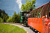 Brienz Rothorn Railway, Switzerlands oldest cogwheel railway, driving uphill, Brienz, Bernese Oberland, Canton of Bern, Switzerland