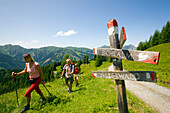 Three hikers arriving sign post, Bichlalm (1731 m), Grossarl Valley, Salzburg, Austria