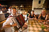Man playing accordion at Bichlalm 1731 m, Grossarl Valley, Salzburg, Austria