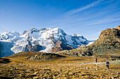 Hikers looking to the Monte Rosa-massif, Zermatt, Valais, Switzerland